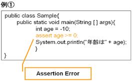 Assersion Error